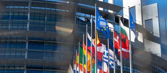 Fahnen der EU-Mitgliedsstaaten vor dem europäischen Parlament in Strassburg.