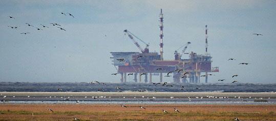 Preis für Opec-Rohöl gefallen