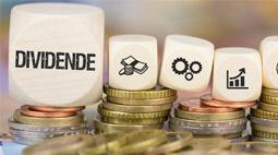 Die langfristige Bedeutung der Dividende